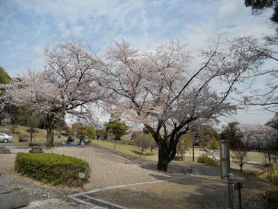 2011-4-komakiyama-2.jpg