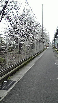 2010040215090000.jpg